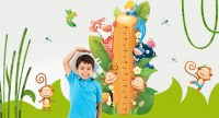 The Wall Adhesive Meters for Baby Bedroom to measure the height of your Kids