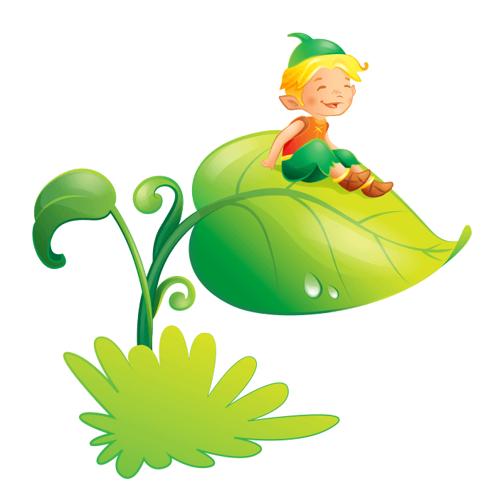 Fairies and Elves Wallstickers for Children Bedroom, Elf on the Leaf Sticker
