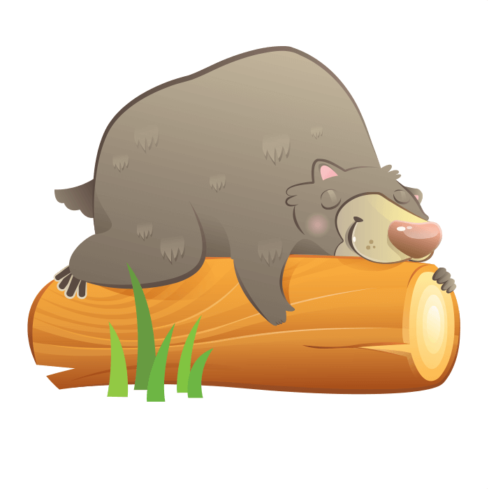 The Friends of the Wool Wall Decors for Children, Sleeping Bear Sticker