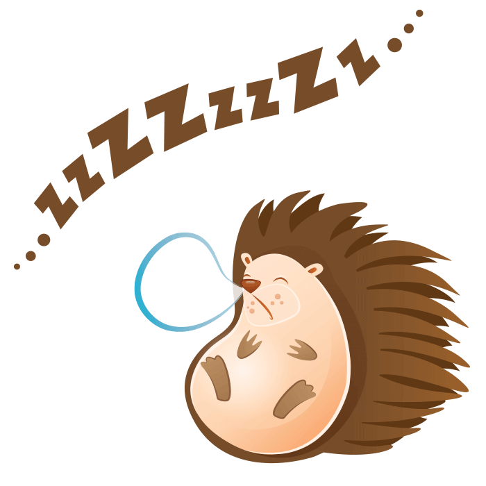 The Friends of the Wool Wall Stickers for Kids, Sleeping Hedgehog Sticker